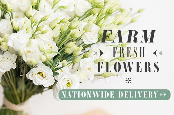 Direct from Farm Flowers