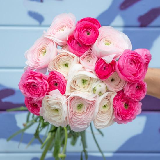 Ranunculus Flower Delivery