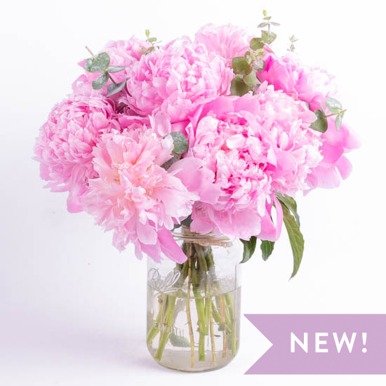 pink peonies | odealarose - flower delivery