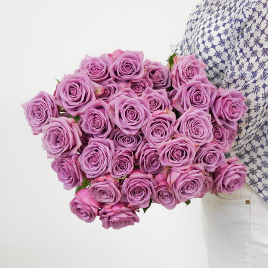 Purple Roses Flower Delivery