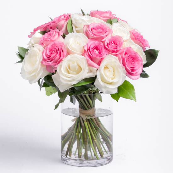 Two Dozen Pink and White roses