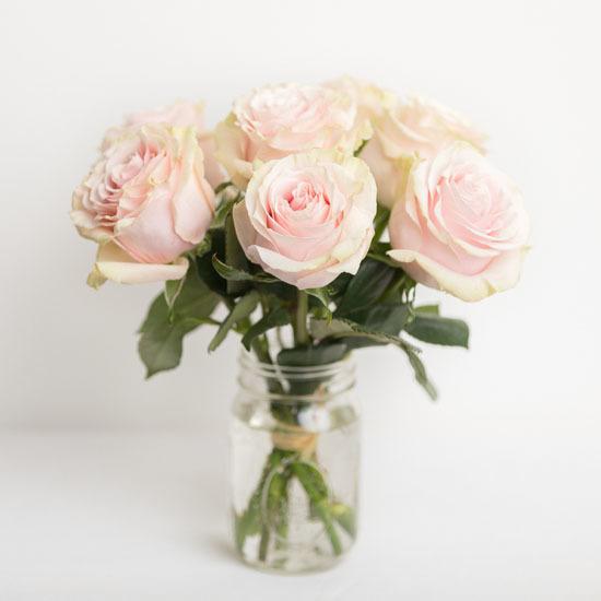 Pick Me Up Pink Odealarose Com Flower Delivery