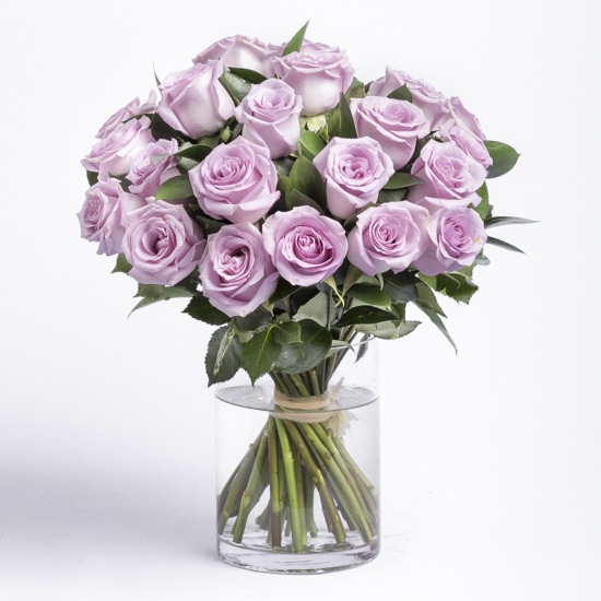 Two Dozen Purple Roses