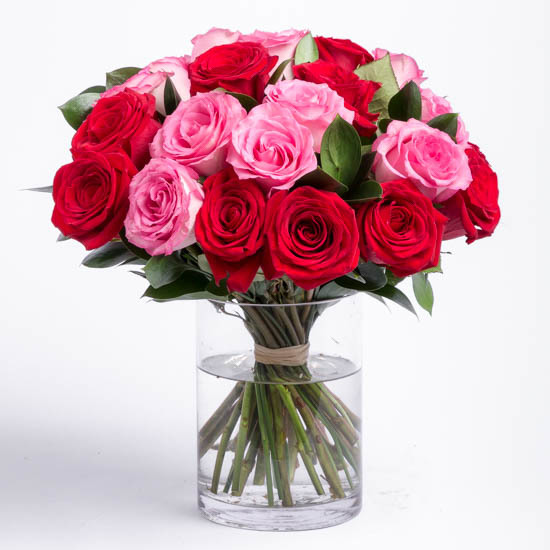 Two Dozen Red and Pink Roses