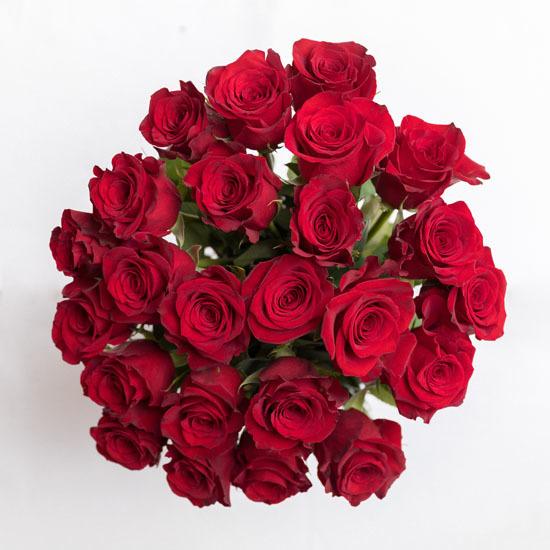 Roses red rose bouquet ode à la